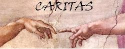 Afbeelding › Caritasgroep: voor iedere hulpvraag een passende behandeling